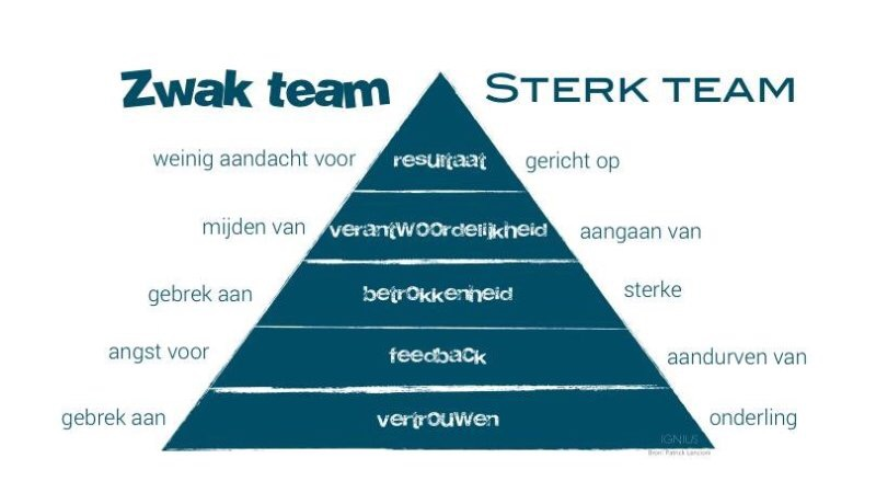De basis voor sterke teams!